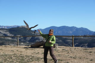 Stania training a falcon with a bait